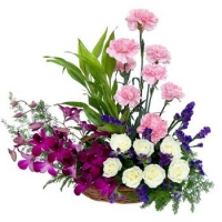 Carnation, Roses, Orchids Basket
